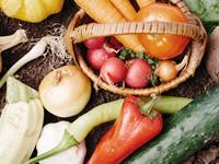 「食べて目にスッキリ」 目に優しい食品と成分